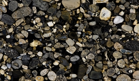 Гранит Marinace Black&Gold